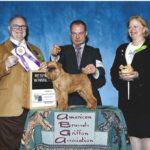2014 ABGA National Specialty Winners